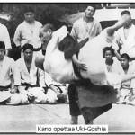 kanoukigoshi